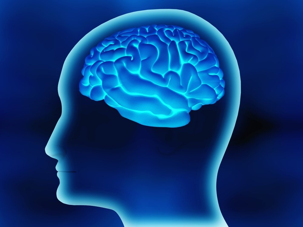 Human brain inside a head made in 3d over a blue background.jpeg